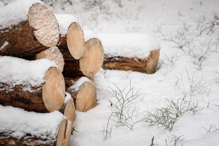 Its winter and its snowing. Woodpiles are made of firewood under the snow. Stack of cut wood under the snow. Reklamní fotografie