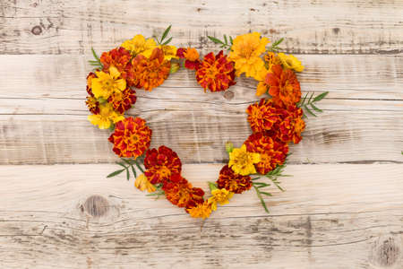 Top view on heart made of many Marigolds, Tagetes erecta, Mexican marigold, Aztec marigold, African marigold on old wooden background.