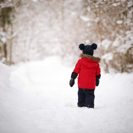 Closeup of a cute boy wearing a red down jacket and a knitted hat with two pompons in the midst of a snow-covered winter forest. Walk through the woods. Outdoors activity. Lifestyle concept