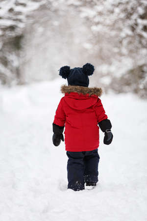 A little boy in a red down jacket walks through a snowy forest. Walk in the fresh air on a winter day. Lifestyle concept