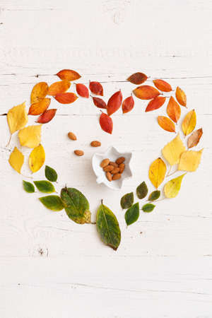 Closeup of autumnal fading leaves lying on a white wooden table. A bowl of nuts in the shape of a maple leaf in the center of the composition. Leaves laid out in the shape of a heart. Autumn concept