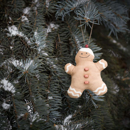 Decorative toy Gingerbread man hanging on a live Christmas tree in the forest. Decorate the Christmas tree for the holiday. Celebration concept 스톡 콘텐츠 - 130401296