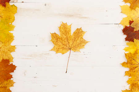 Maple leaves of different colors lie on the edges on a wooden table. A large maple leaf is in the center. Autumn concept 스톡 콘텐츠
