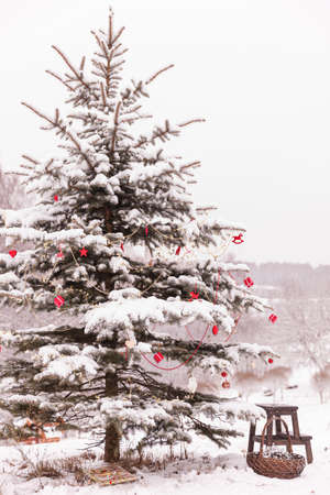 Christmas decorations on a beautiful tree coated with snow. Traditional christmas tree. Holiday and celebration concept 스톡 콘텐츠 - 132133496