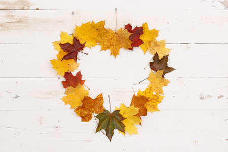 Many multi-colored maple leaves lie on a white wooden table. In the center is copy space, a frame in the shape of a heart. Autumn concept 스톡 콘텐츠 - 132191123
