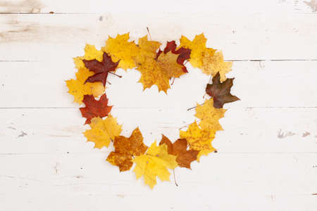 Many colored maple leaves lie on a white textured wooden table. Heart shaped frame from autumn leaves. Copy space inside the heart. 스톡 콘텐츠 - 132280933