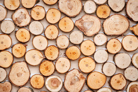 Top view on many thick sliced tree slices. Street decor for a holiday on a snowy cold day Stockfoto