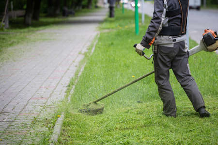 Close-up of a worker in protective clothing and gloves with a lawn mower on the lawn next to the road. A man mows grass with dandelions on a heavy cloudy spring day. Stock Photo