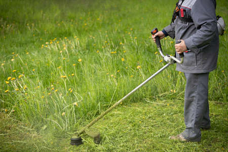 A worker in protective clothing with a trimer in his hands, mows the grass on the lawn. The powerful mower mows flowers and other plants. Territory care.