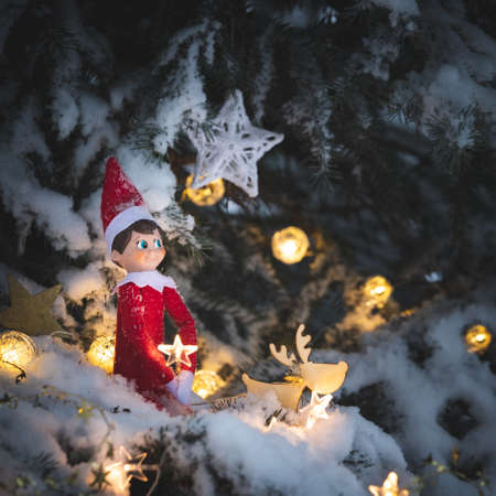A cute Christmas toy sits on a snow-covered evergreen tree decorated with shining garlands and other New Year's toys on a winter evening. Celebration and magic concept