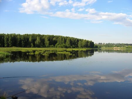 atmospheric phenomena: Reflection of trees in water