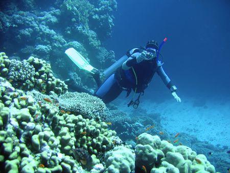 unexpectedness: zambullidor en fot�grafo subacu�tico profundo Foto de archivo