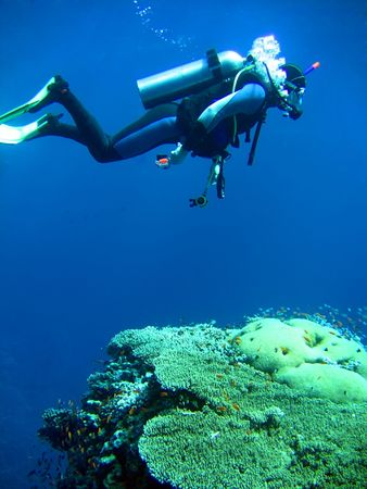 boldness: diver in deep and sea coral Stock Photo