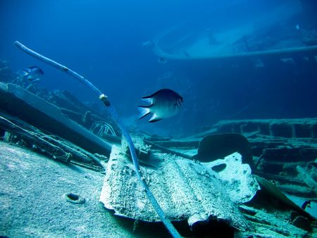 fragments: Underwater landscape with boat fragments and fish. The Red Sea