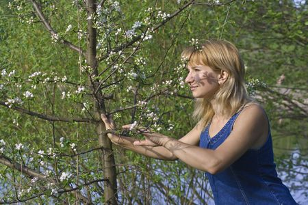 The girl smells blossoms on a cherry tree Stock Photo - 2175265