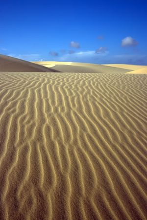 sandhills: Sandy dunes in desert Stock Photo