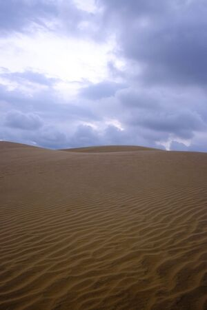 sandhills: Sandy dunes in desert on sunset