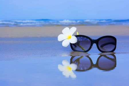sunglasses beach: Reflection of Sunglasses and plumeria flower on the beach Stock Photo