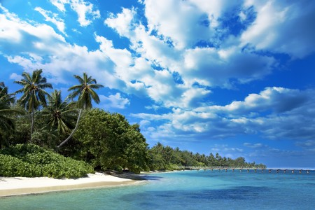 Coast of Indian ocean. Maldives Stock Photo - 4255571