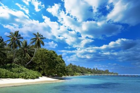 Coast of Indian ocean. Maldives Stock Photo - 4255571