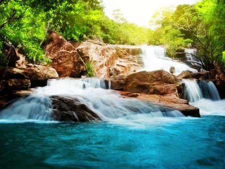 waterfall in forest: Waterfall in rain forest