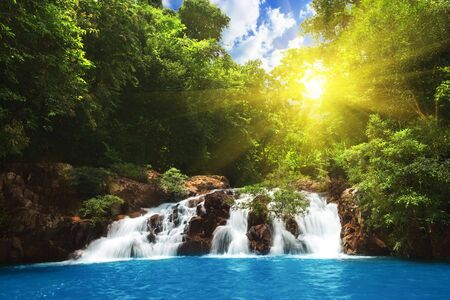 beautiful waterfall in tropical forest photo