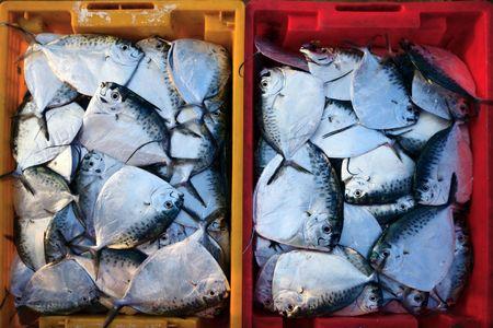 Fish in basket on fish market. Vietnam photo