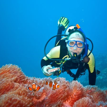 水中写真家と彼らのアネモネの Clownfishes