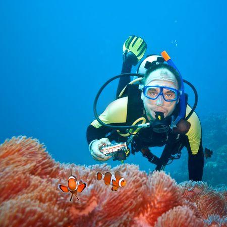picada: Fot�grafo subacu�tico y Clownfishes en su an�mona Foto de archivo
