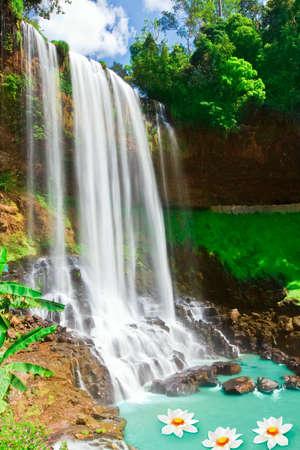 Beautiful lotus flowers in waterfall pool. Vietnam Imagens