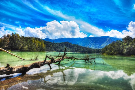 Volcanic lake Telaga Warna at plateau Dieng