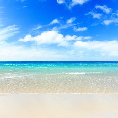 caribbean sea: Tropical sandy beach at summer sunny day