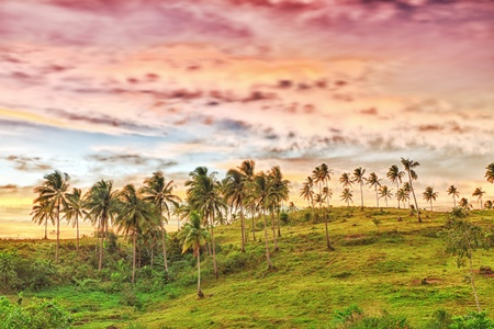 Rural landscape at sunset time. Donsol. Philippines Stock Photo - 9230254