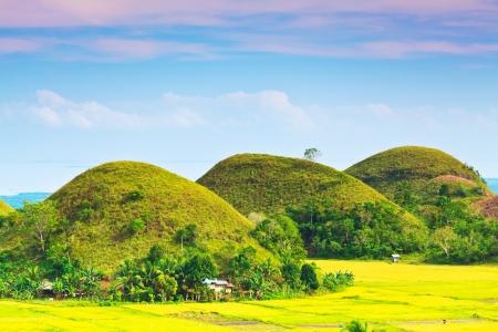View of The Chocolate Hills. Bohol, Philippines 免版税图像