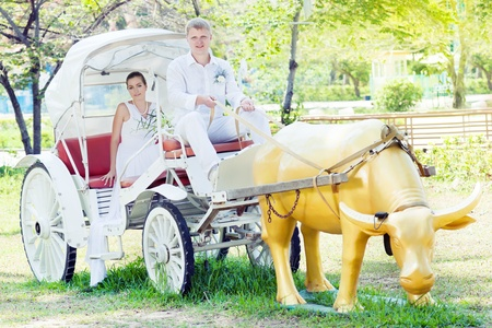 Groom as a coachman cart his bride photo