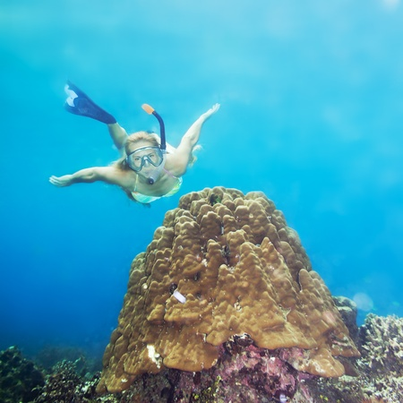 Beautiful woman diver swimming among the coral reef 免版税图像