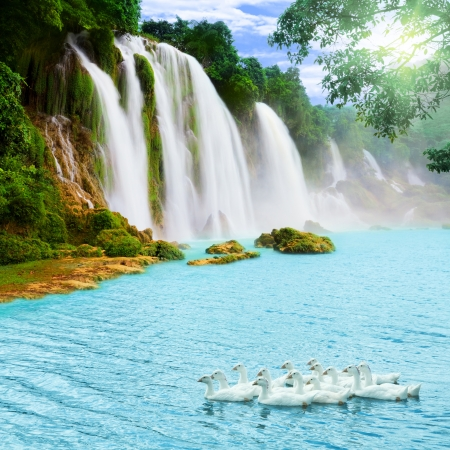 waterfall: Beautiful waterfall at sunny day. Swans on the foreground Stock Photo