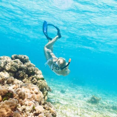 wśród: PiÄ™kny basen nurek kobieta wÅ›ród rafy koralowej Zdjęcie Seryjne
