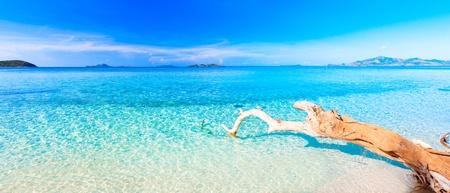 Tropical sandy beach at summer sunny day. Panorama
