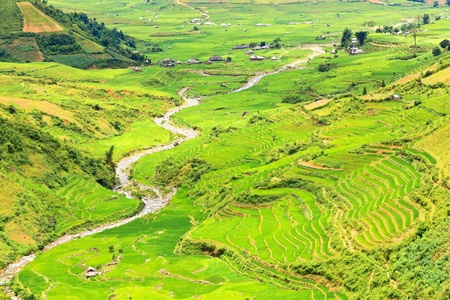 Mountain valley with a river flowing among rice fields photo