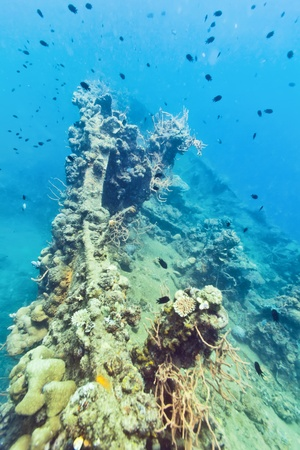 ship wreck: Shipwreck underwater. Sunken gunboat at Lusong Island