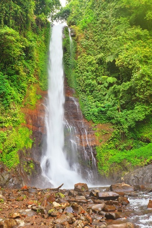 Beautiful waterfall in rainforest. Bali photo