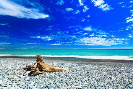 Coast of the Tasman sea