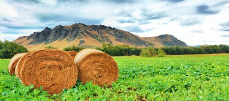 Rural lanscape  Golden Hay Bales on the foreground Stock Photo - 12961005