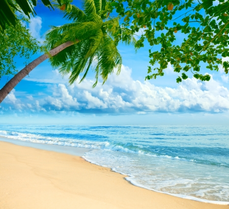 Sandy tropical beach in summer sunny day photo