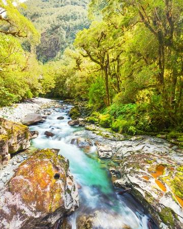 chasm: The Chasm  Fiordland, South Island, New Zealand