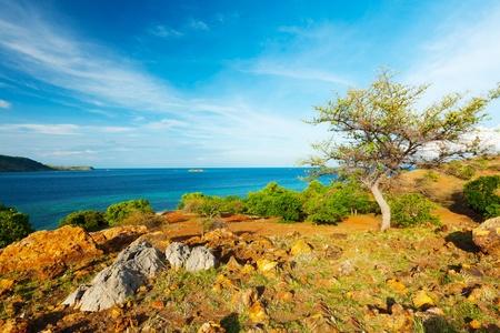 komodo island: Seraya island  Komodo national park