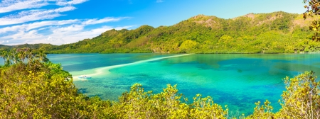 palawan: Beautiful view of a tropical island Snake  Philippines