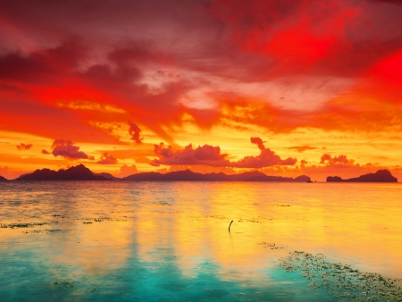 palawan: Fantasy sunset over the sea  Palawan  Philippines