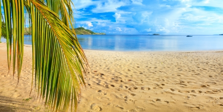 panoramic beach: Panorama of the tropical beach Stock Photo